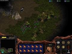 StarCraft - screen - 2009-01-27 - 132568