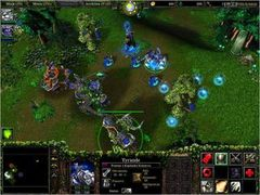 Warcraft III: Reign of Chaos - screen - 2002-07-08 - 10807
