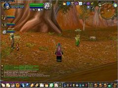World of Warcraft - screen - 2005-01-20 - 40796