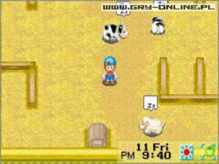 Harvest Moon: Friends of Mineral Town id = 31523