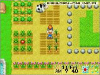 Harvest Moon: Friends of Mineral Town id = 31526
