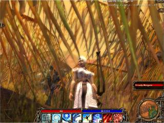 Guild Wars: Prophecies - screen - 2004-05-11 - 26157