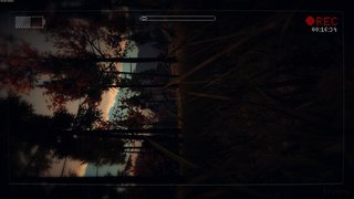 Slender: The Arrival - screen - 2013-04-03 - 258959
