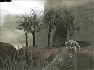 Shadow of the Colossus - screen - 2006-02-06 - 61478