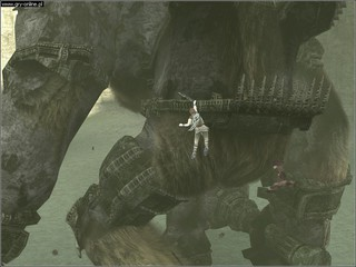 Shadow of the Colossus - screen - 2006-02-06 - 61481