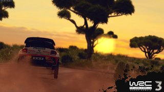 WRC 3 - screen - 2012-12-05 - 253042