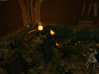 Neverwinter Nights 2: Wrota Zachodu - screen - 2009-05-08 - 146430