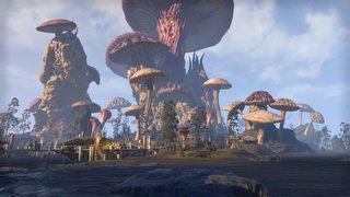 The Elder Scrolls Online: Tamriel Unlimited - Morrowind id = 344248