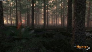 theHunter - screen - 2011-05-02 - 208140