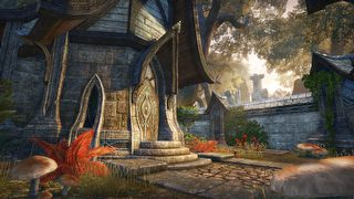 The Elder Scrolls Online: Tamriel Unlimited - screen - 2016-10-13 - 332615