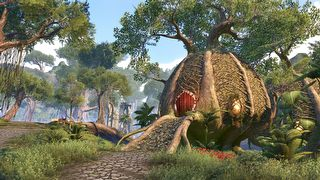 The Elder Scrolls Online: Tamriel Unlimited - screen - 2016-10-13 - 332616