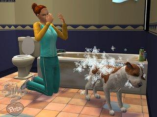 The Sims 2: Zwierzaki - screen - 2006-10-19 - 74593