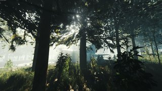 The Forest - screen - 2014-12-08 - 292657