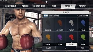 Real Boxing - screen - 2013-07-30 - 267098