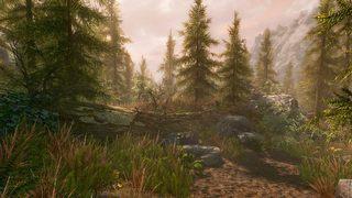 The Elder Scrolls V: Skyrim Special Edition id = 323642