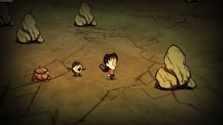 Don't Starve - screen - 2013-05-27 - 262059