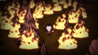 Don't Starve - screen - 2013-05-27 - 262062