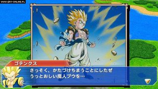Dragon Ball Z: Tenkaichi Tag Team - screen - 2010-09-01 - 194055