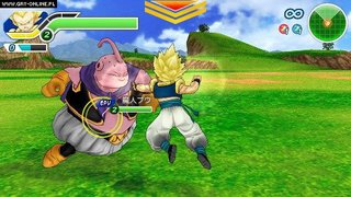 Dragon Ball Z: Tenkaichi Tag Team - screen - 2010-09-01 - 194056