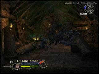 Władca Pierścieni: Powrót Króla - screen - 2003-12-11 - 21045