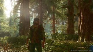 Days Gone id = 347885