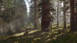 Red Dead Redemption 2 - screen - 2017-05-23 - 345930