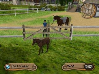 Konie i kucyki - screen - 2014-01-14 - 275926