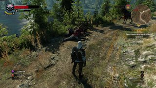 The Witcher 3: Wild Hunt id = 299256
