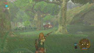 The Legend of Zelda: Breath of the Wild id = 324251