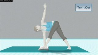 Wii Fit - screen - 2008-02-20 - 95928