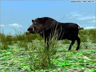 Hunting Unlimited 3 - screen - 2004-10-06 - 34268