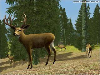 Hunting Unlimited 3 - screen - 2004-10-06 - 34273