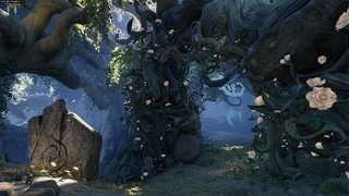 Fable Legends - screen - 2015-06-18 - 302057