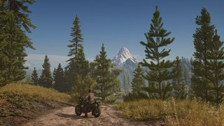 Days Gone id = 330655