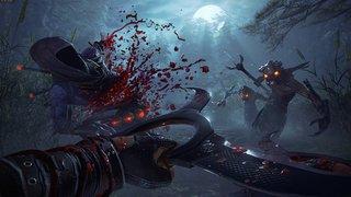 Shadow Warrior 2 - screen - 2015-06-12 - 300982
