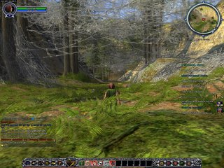 The Lord of the Rings Online: Shadows of Angmar - screen - 2007-03-05 - 79710