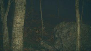 theHunter: Call of the Wild id = 339204