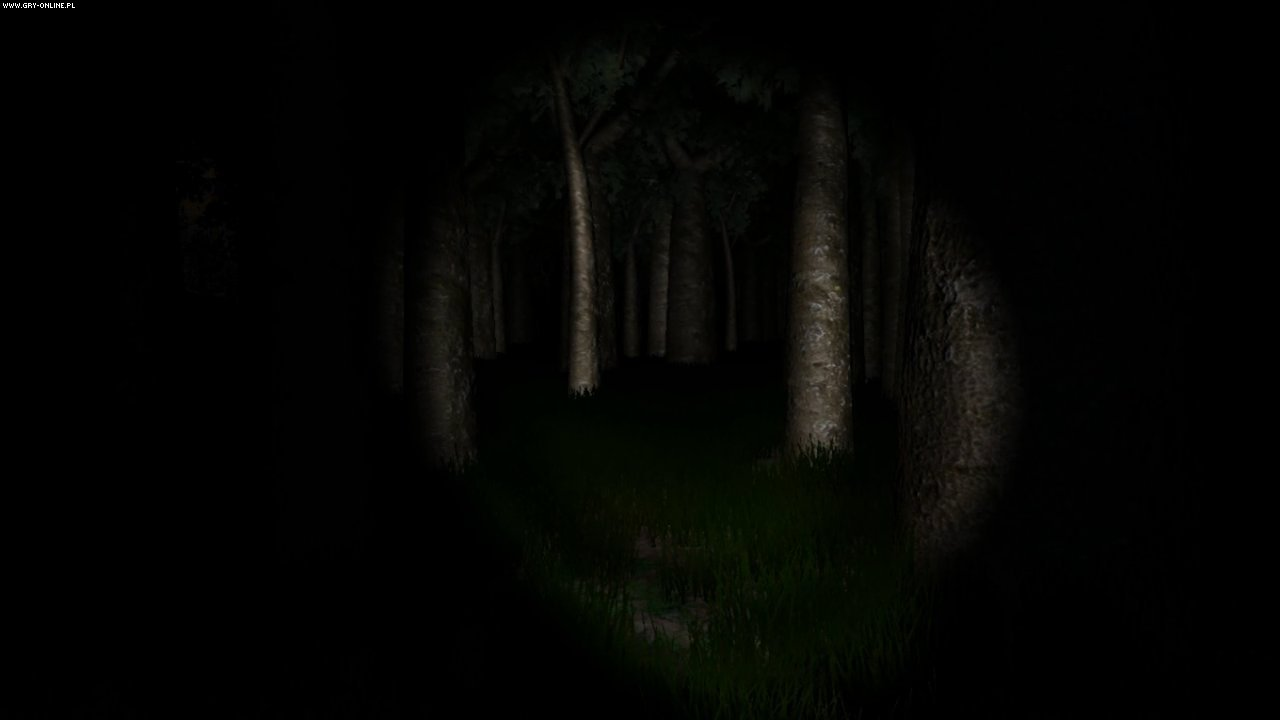 Slender: The Eight Pages PC Gry Screen 3/6, Parsec Productions