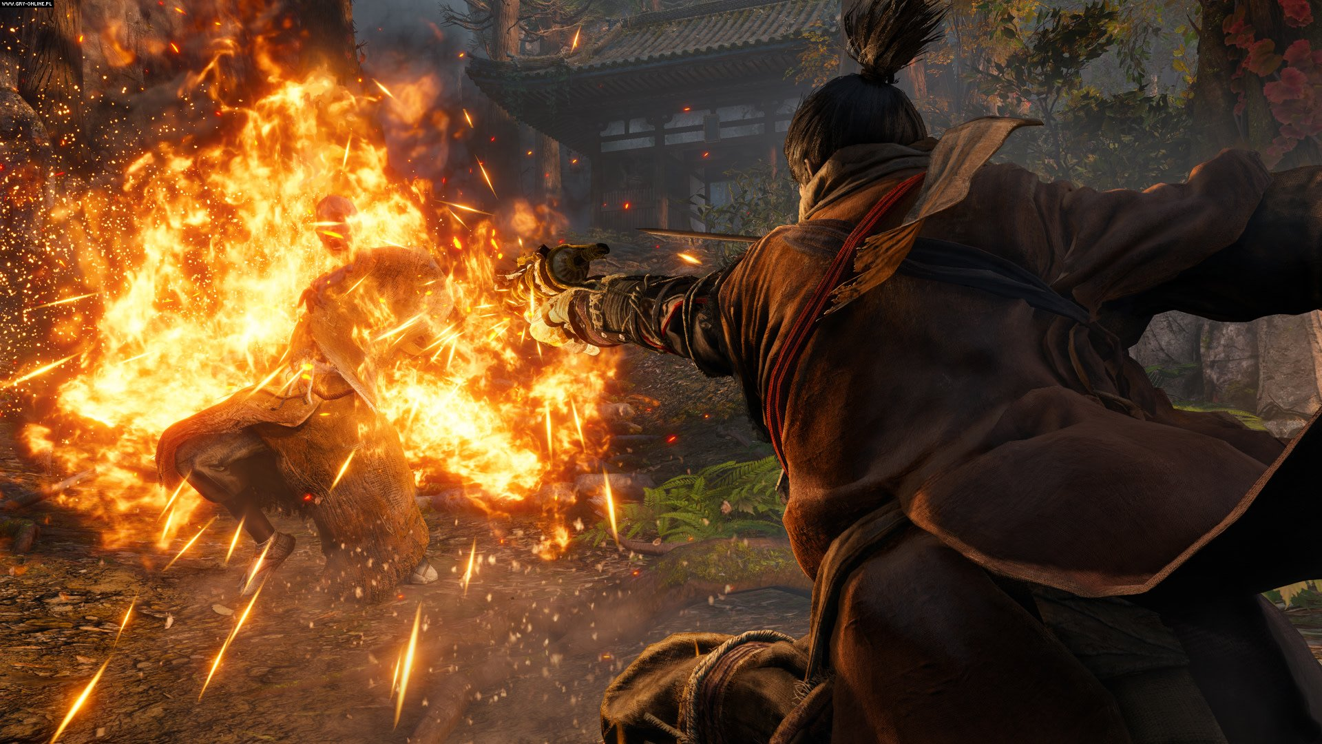 Sekiro: Shadows Die Twice PC, PS4, XONE Games Image 4/29, FromSoftware, Activision Blizzard