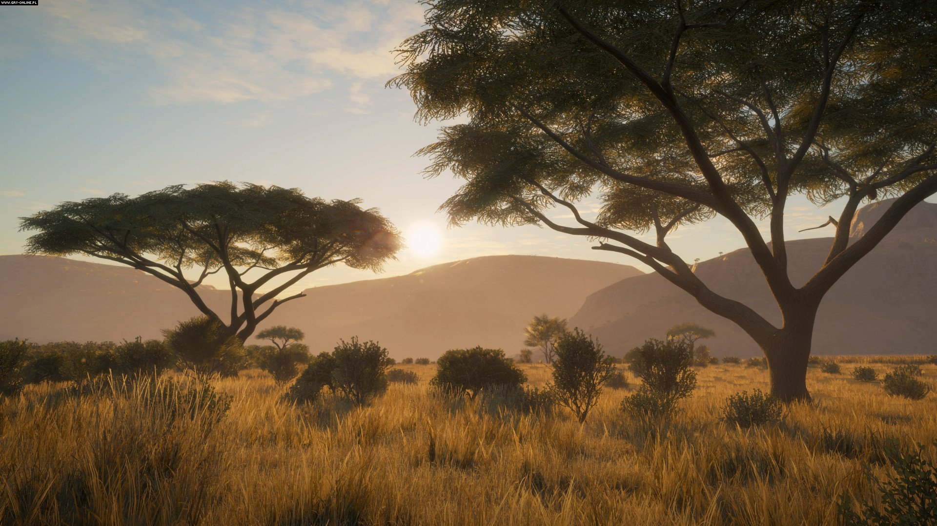 theHunter: Call of the Wild PC, PS4, XONE Gry Screen 8/79, Expansive Worlds, Avalanche Studios
