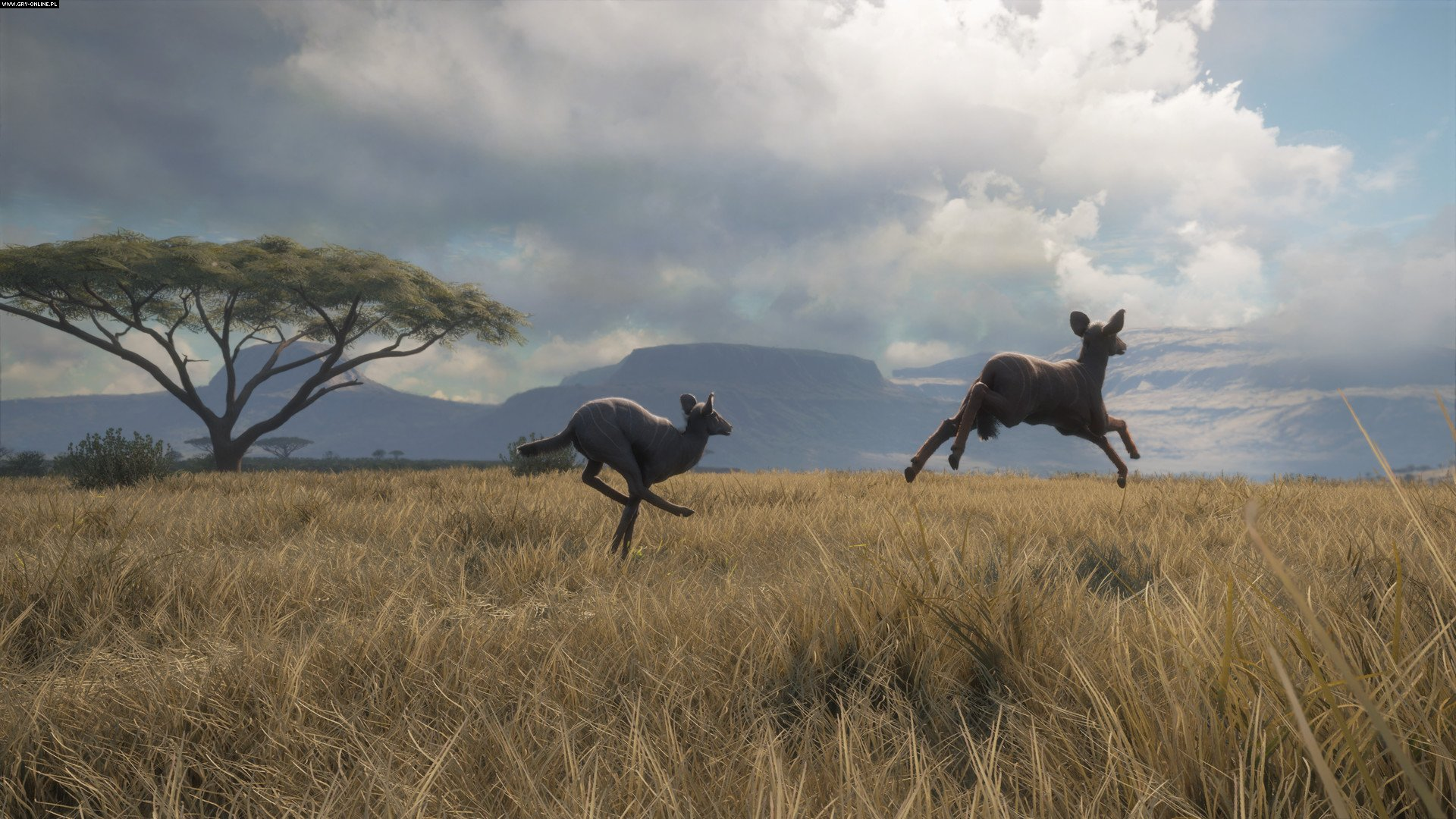 theHunter: Call of the Wild PC, PS4, XONE Gry Screen 4/79, Expansive Worlds, Avalanche Studios