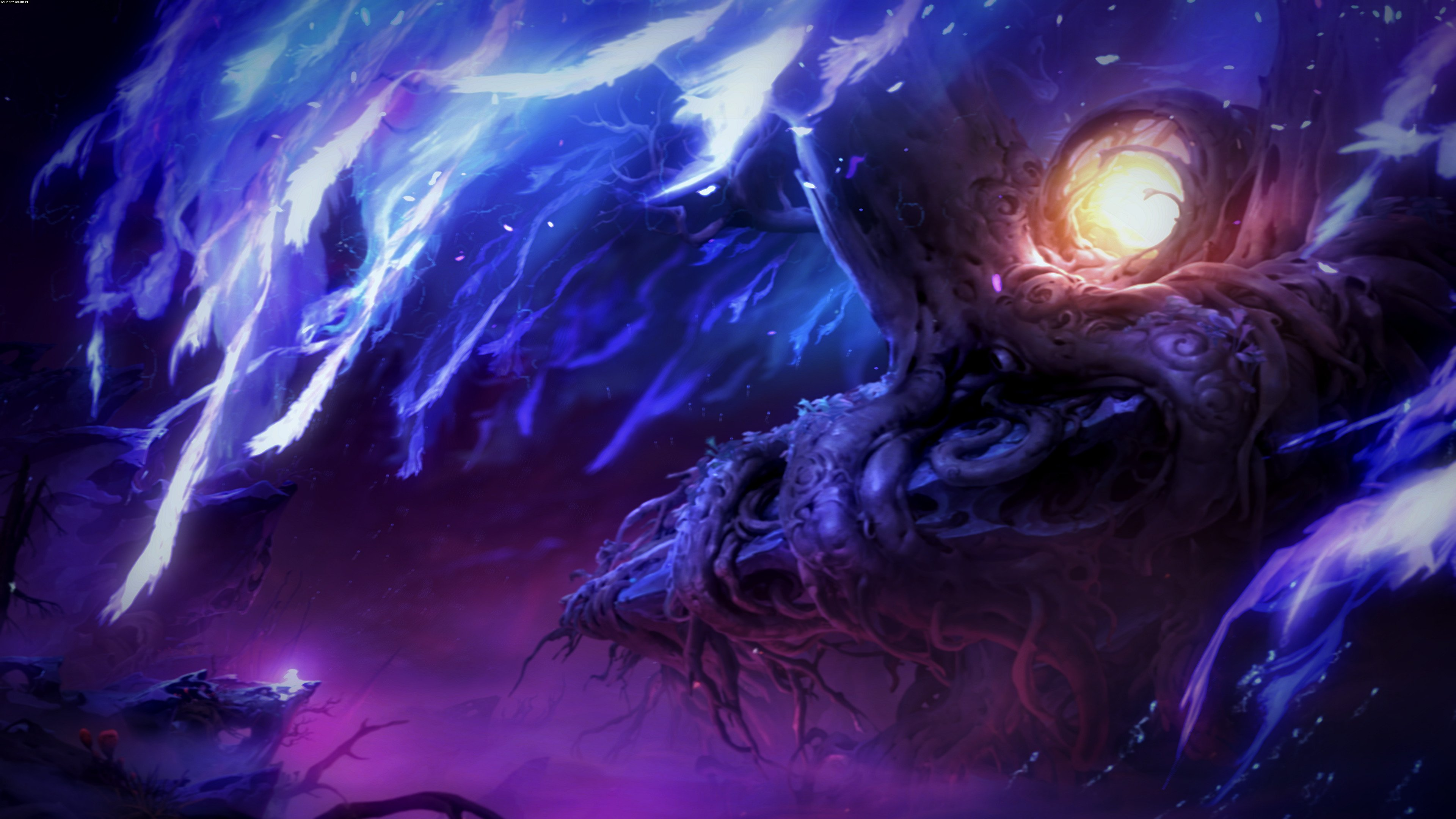 Ori and the Will of the Wisps PC, XONE Games Image 4/11, Moon Studios, Xbox Game Studios / Microsoft Studios