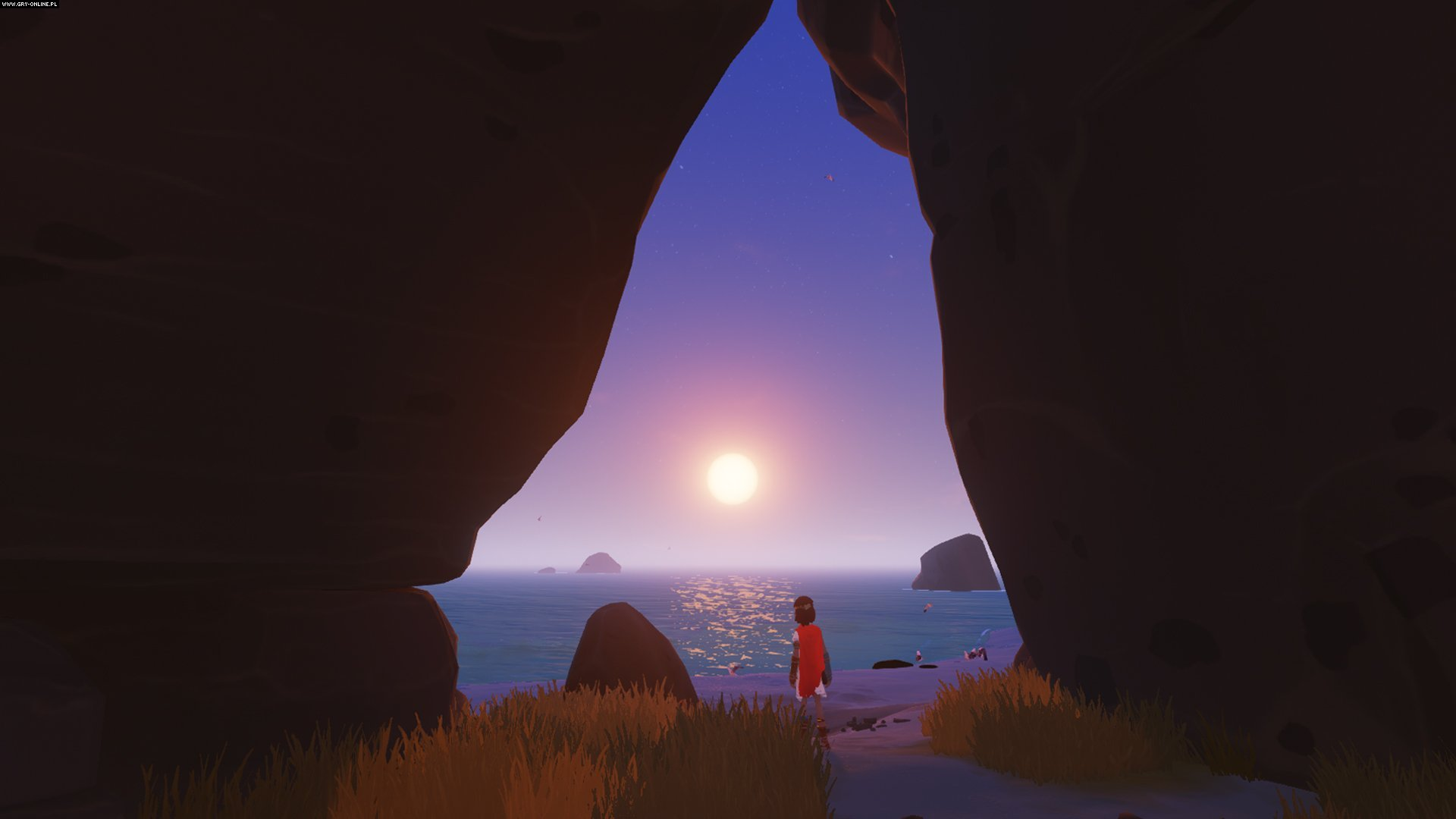 Rime PSV, PS4 Games Image 34/38, Tequila Works, Grey Box