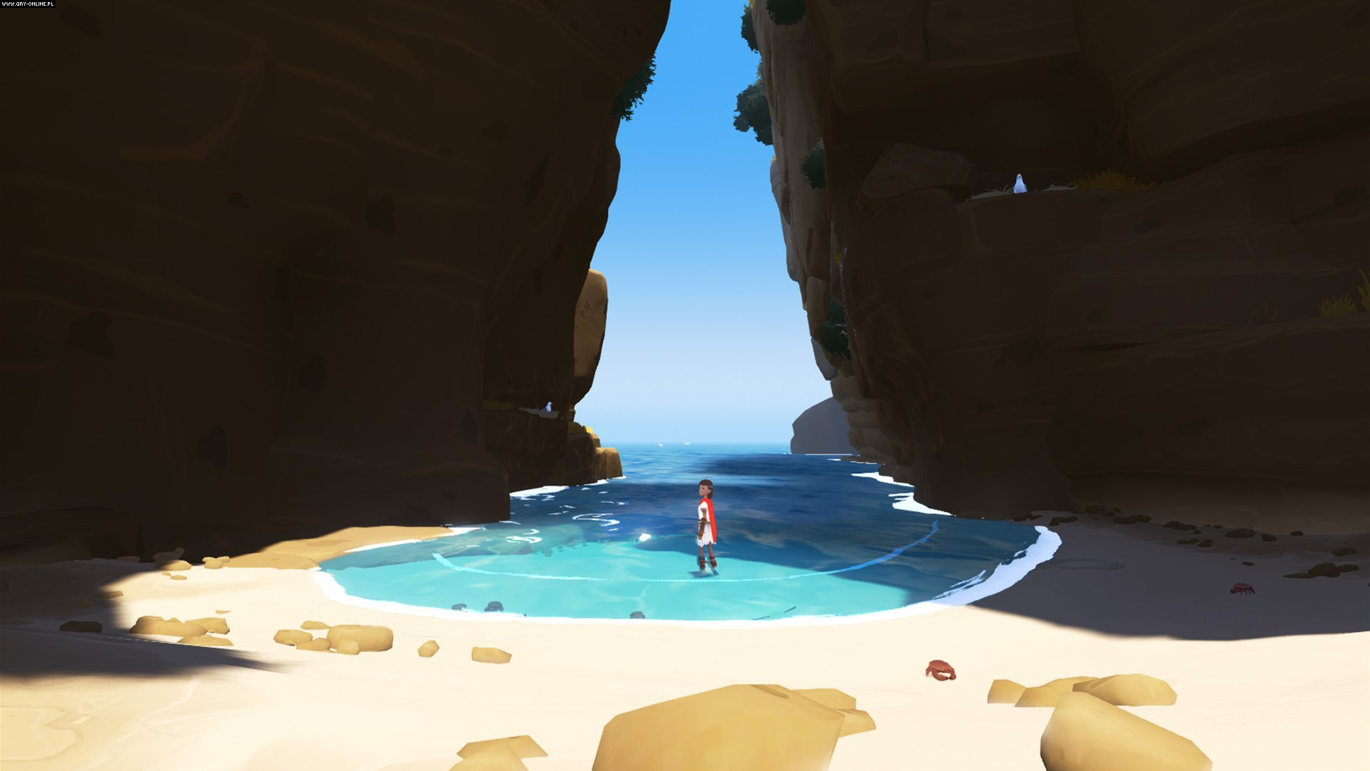 Rime PSV, PS4 Games Image 33/38, Tequila Works, Grey Box