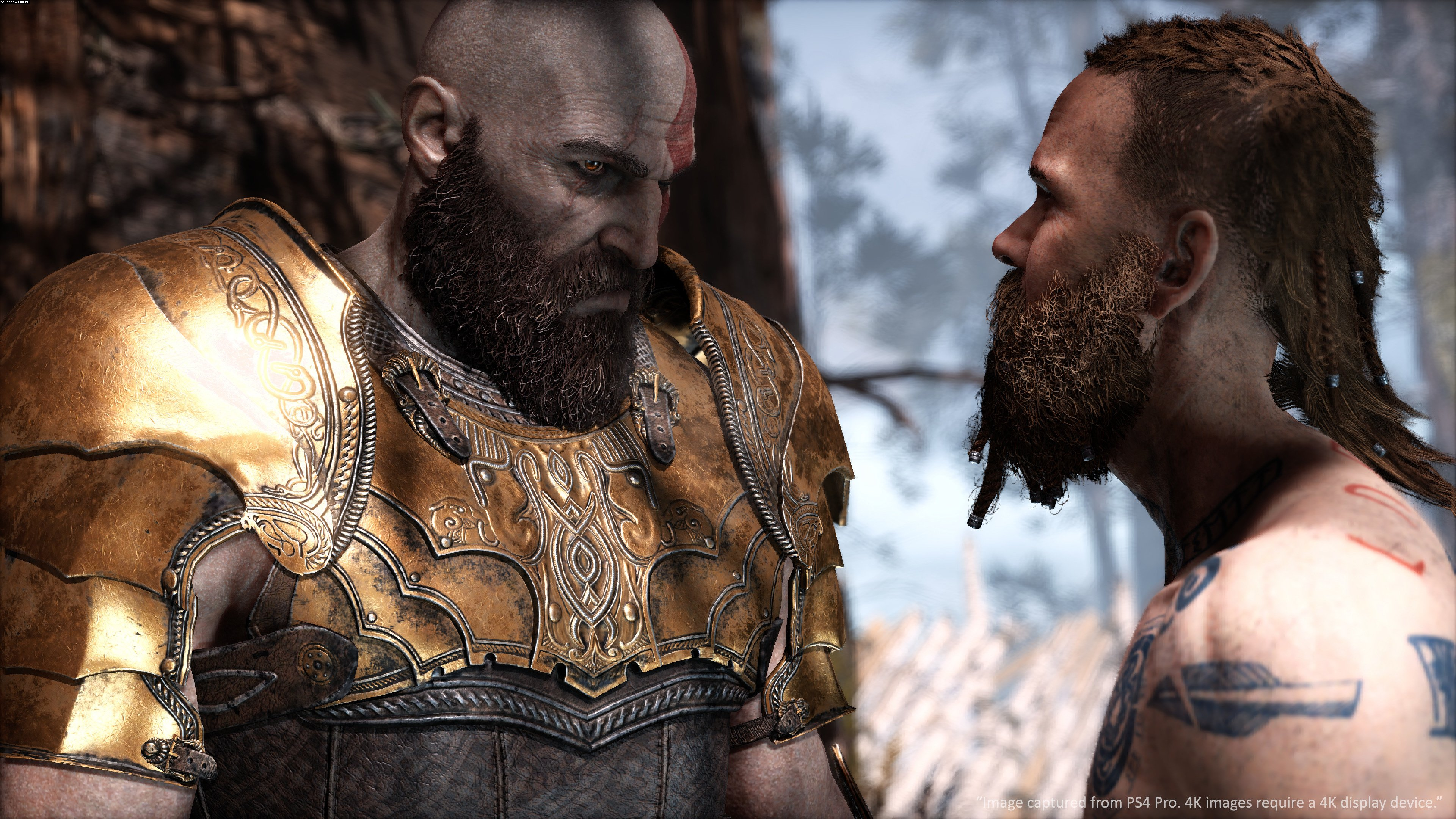 God of War PS4 Gry Screen 5/105, Sony Interactive Entertainment