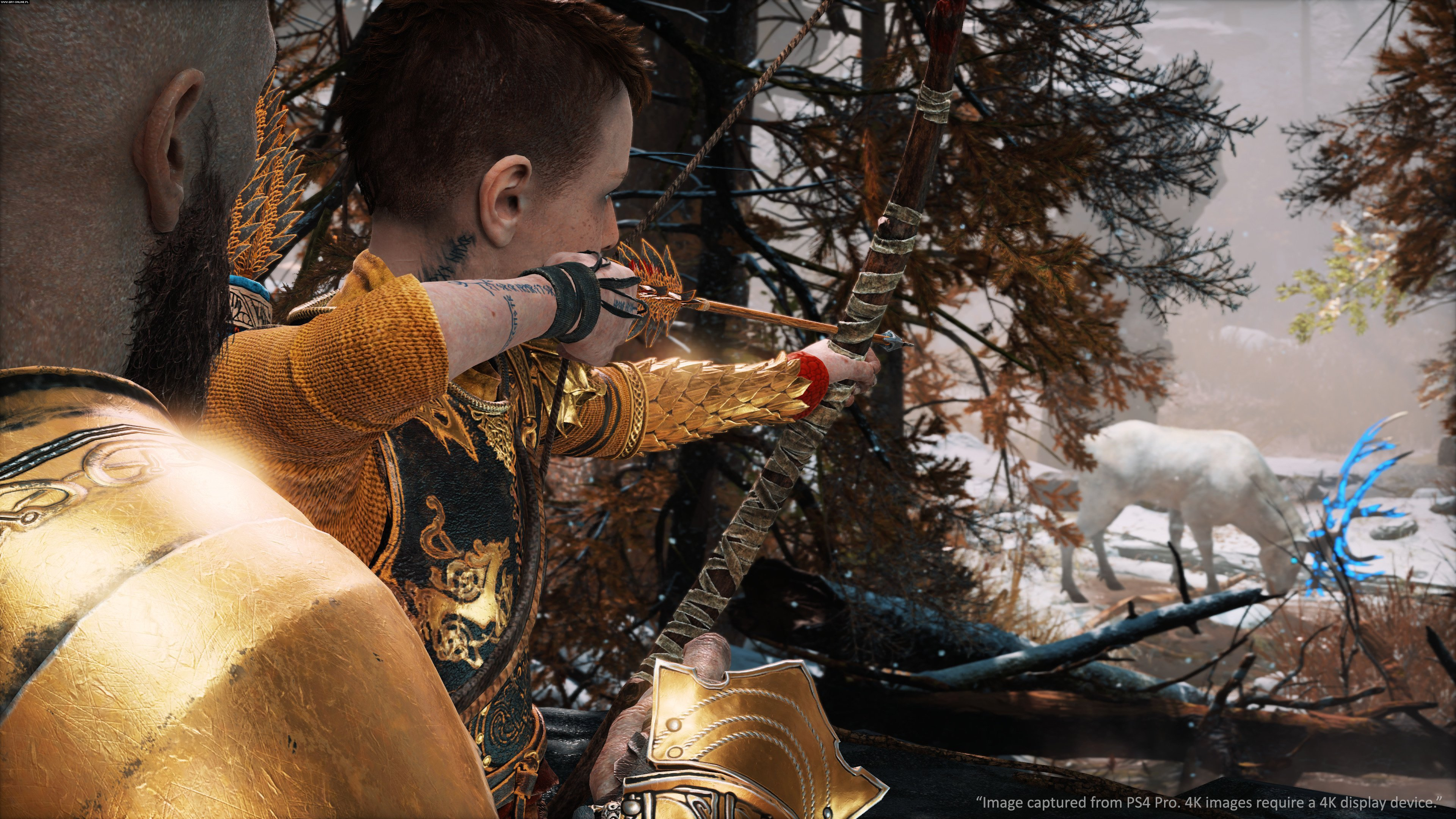 God of War PS4 Gry Screen 2/105, Sony Interactive Entertainment