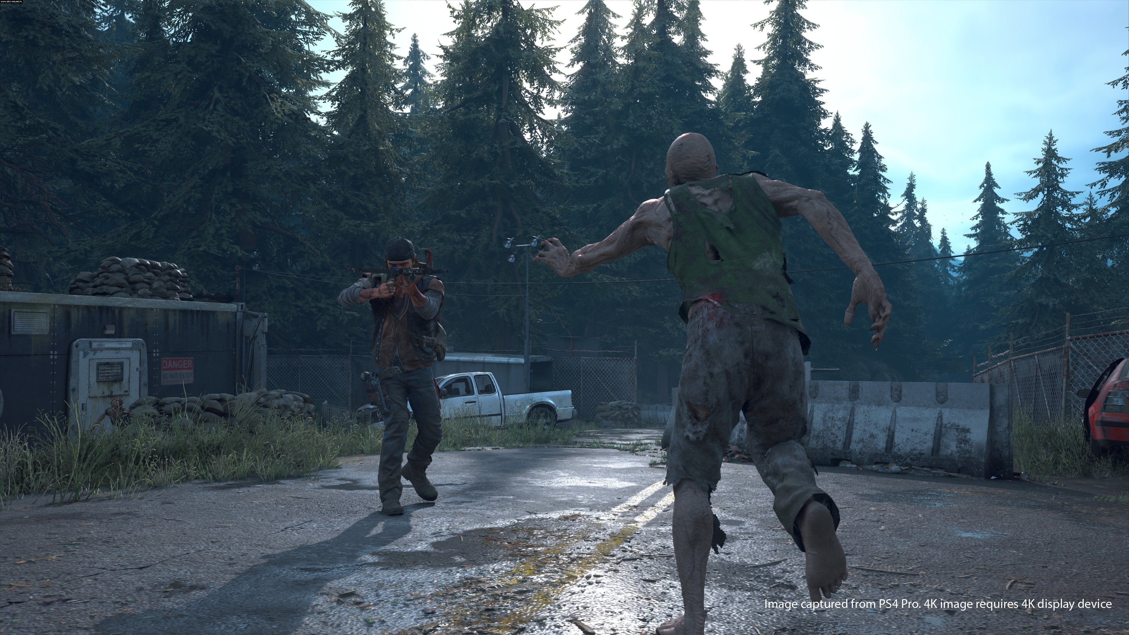 Days Gone PS4 Games Image 46/67, Bend Studio, Sony Interactive Entertainment