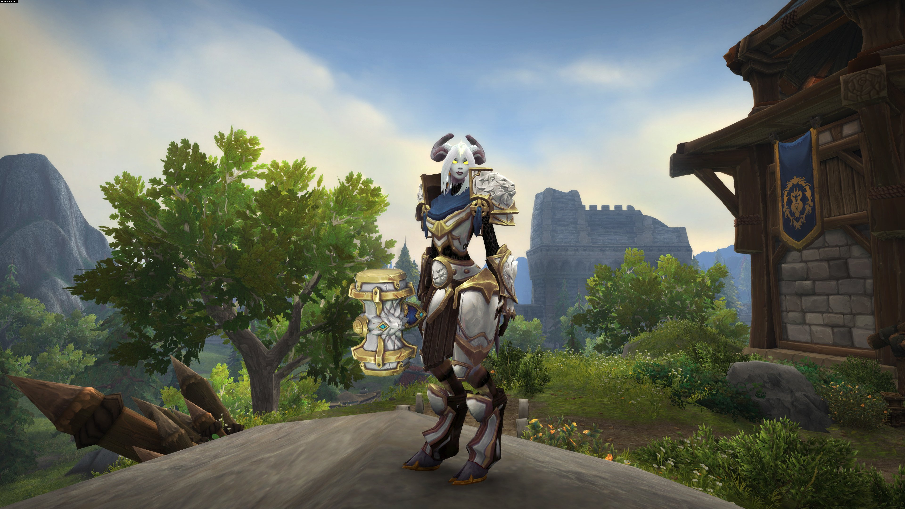 wow a world of warcraft ethnography World of warcraft is constantly updated with new adventures to undertake, lands to explore, and monsters to vanquish for a change of pace, join the party at a seasonal event like brewfest or hallow's end.
