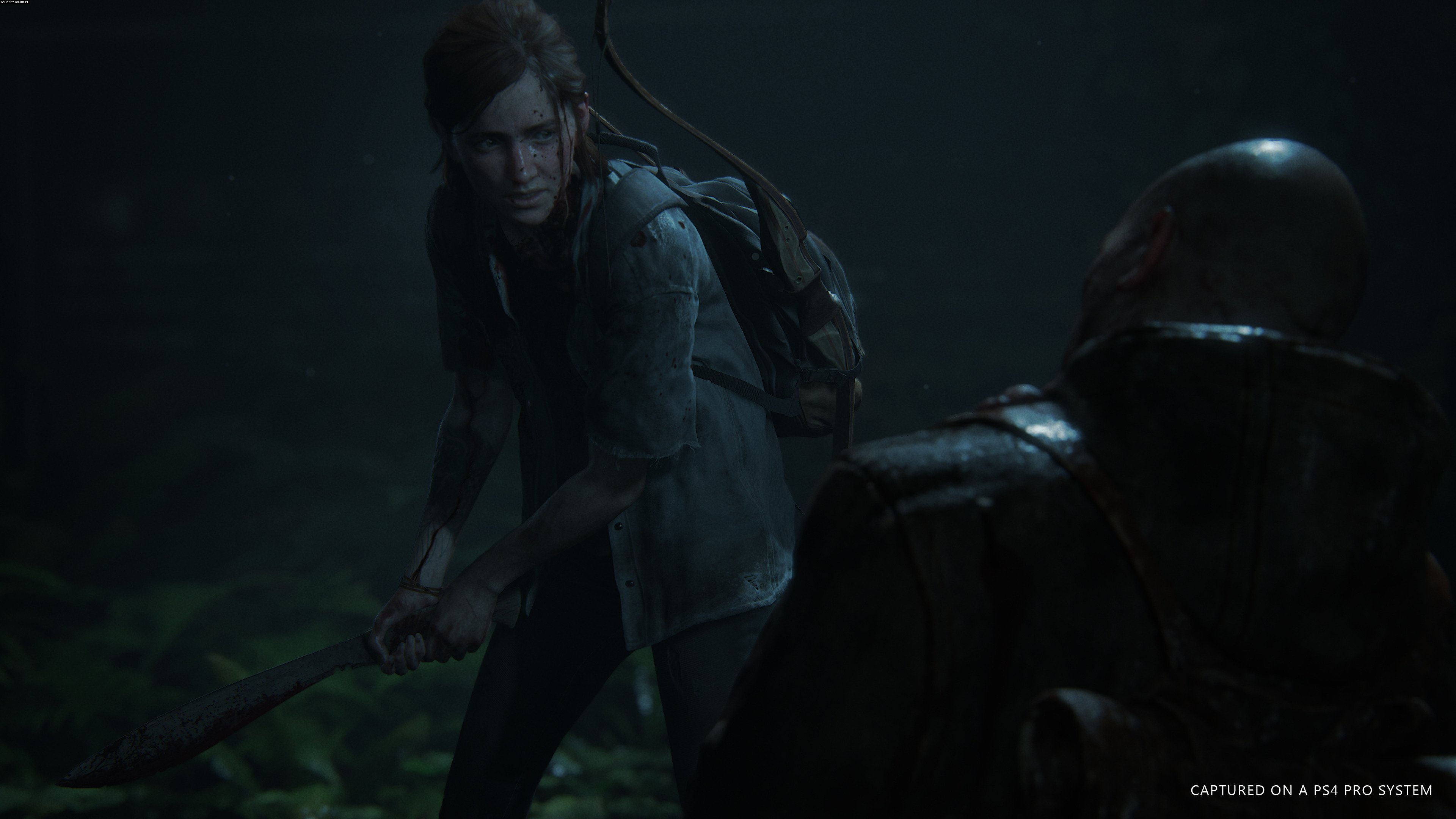 The Last of Us: Part II PS4 Gry Screen 10/30, Naughty Dog, Sony Interactive Entertainment