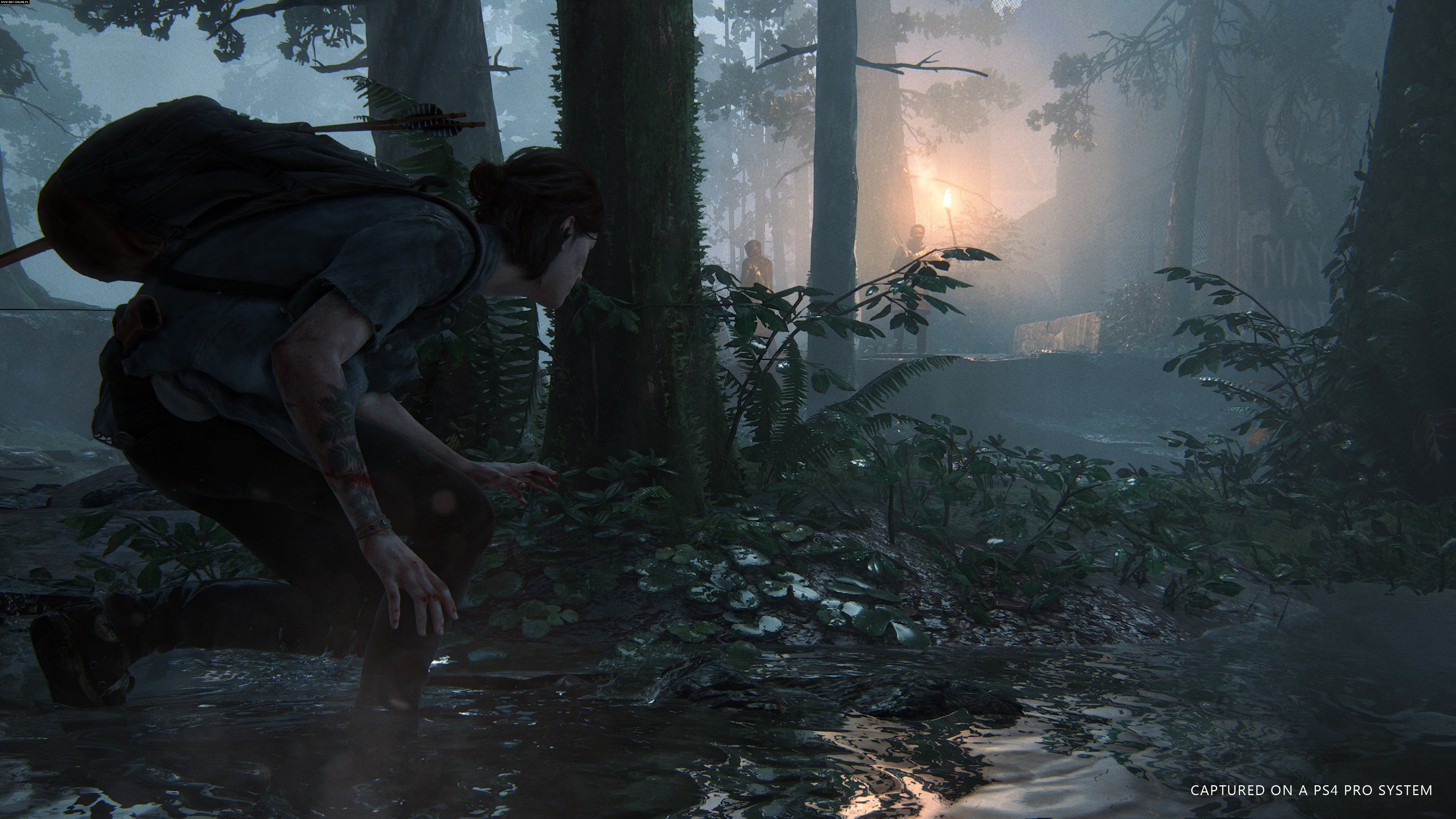 The Last of Us: Part II PS4 Gry Screen 4/30, Naughty Dog, Sony Interactive Entertainment